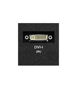 Marshall MD-DVII-A - DVI-I Input Module