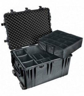 Pelicase 1660-024-110E - Protector Case with dividers, Black