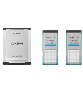 Sony AXS-A1TS24 - AXS Memory Media 1TB A-version