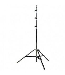 Matthews 387032 - Digital Baby Stand