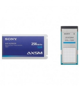 Sony AXS-A256S24/2 - Pack of 2 AXS-A256S24 Memory cards