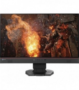 Eizo FS2434 - 23.8 inch High End LCD-Widescreen Monitor, Black, Swiss Warranty