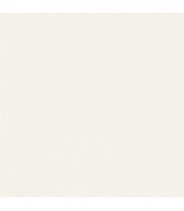 Colorama COL 182 - Polar White 11 x 2.72 m