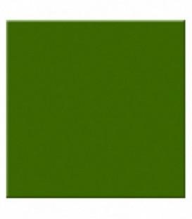 Tiffen 22G2 - 2X2 Green 2 Filter