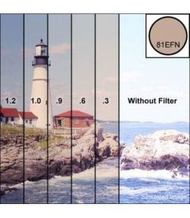 Tiffen S981EFN9 - Series 9 81Efn9 Filter