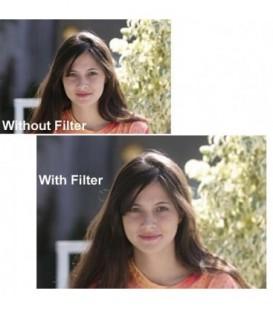 Tiffen FW1GG12 - Filter Wheel 1 Glimmer Glass 1