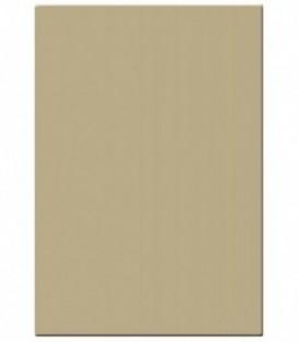 Tiffen 5681D - 5X6 81D Filter