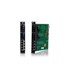 Magenta 400R3308-01 - Morph-It Dual MultiView EQ card (single-slot)