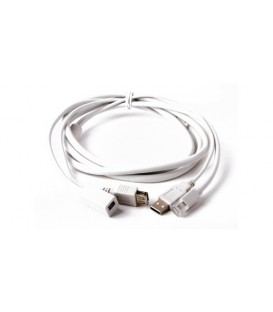 LMP USB-C DP-si-50 - USB-C to DisplayPort Adapter, 50 pack