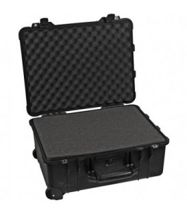 Pelicase 1560-000-110E - Protection Case with foam, black