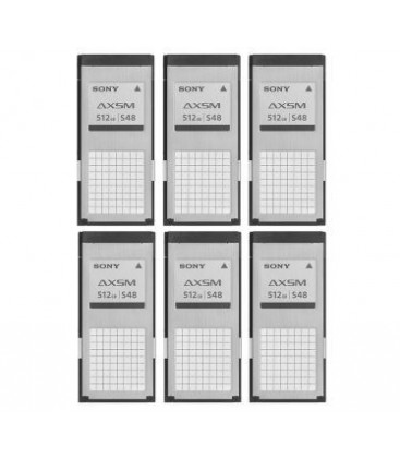 Sony AXS-A512S48/6pcs - Pack of 6x AXS-A512S48 memory cards