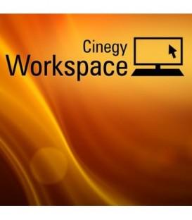 Cinegy Workspace CAL25
