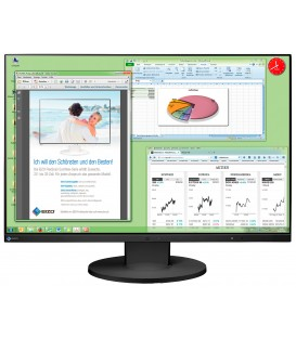 Eizo EV2455W-Swiss Edition - 24.1 inch High End IPS-LCD-Widescreen, Black