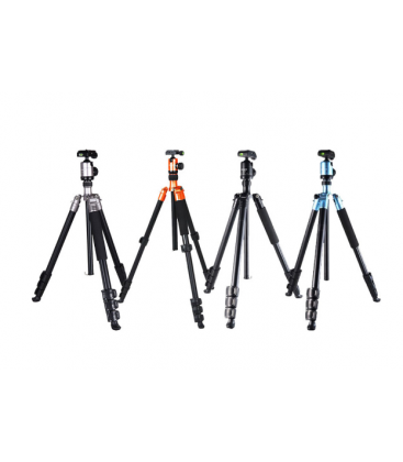 FotoPro C40i+53P - 4-Section Aluminum Tripod Kit with FPH-53P Ball Head (Black)