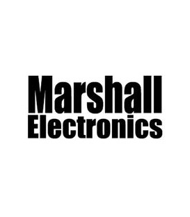 Marshall AR-DM61-BT-64DT - Multi-Channel Digital Audio Monitor with Dante 64 ch.