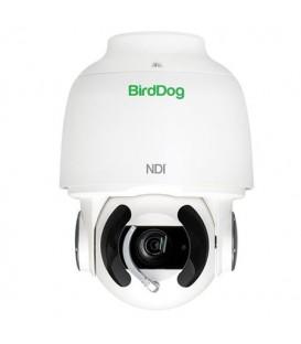 BirdDog BDA200 - BirdDog Eyes A200 IP67 Weatherproof Full NDI PTZ Camera w/Sony Sensor & SDI (White)