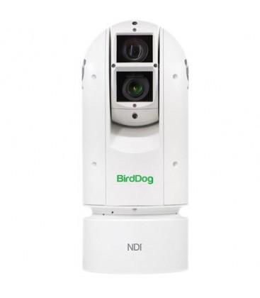 BirdDog BDA300 - BirdDog Eyes A300 IP67 Extreme Weatherproof Full NDI PTZ Camera w/Sony Sensor & SDI (White)