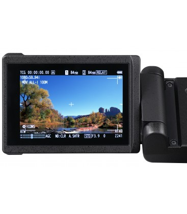 Panasonic AG-CX350 - Memory Card Camera Recorder
