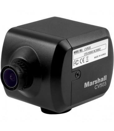Marshall CV503 - CV503 Miniature HD Camera