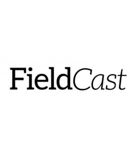 FieldCast co100 - Mux/Demux One 3G, 4 channel CWDM box